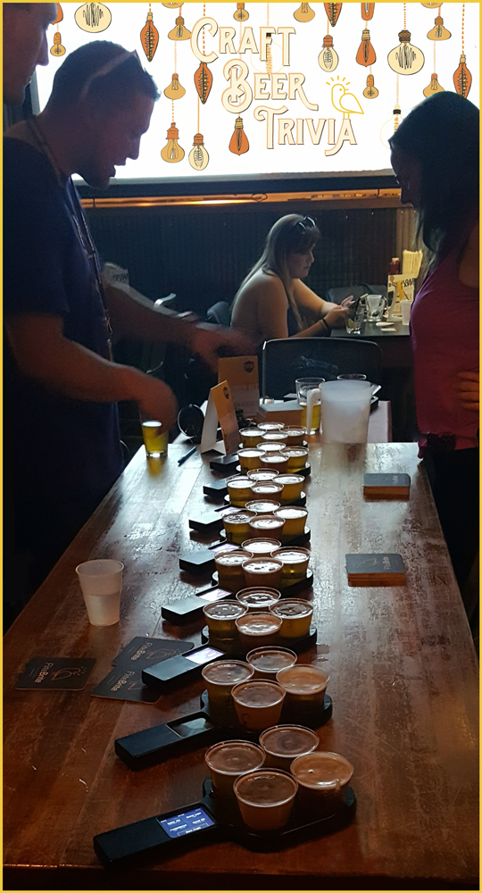 Craft Beer Trivia - Smart Beer Flights